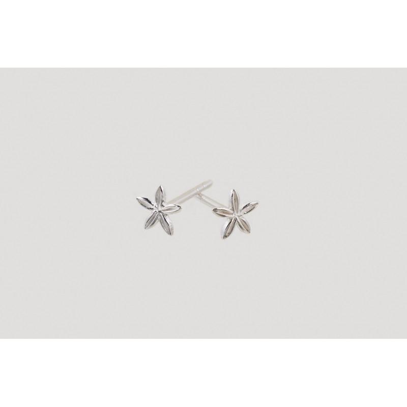 Star Blossom Ohrringe Silber